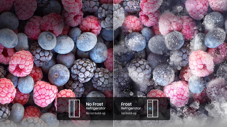Frost free freshness