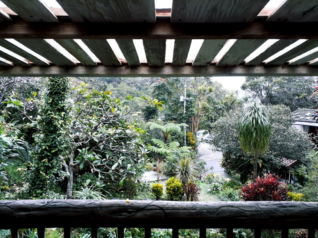 The view of an exotic tropical garden from over a wooden balcony.
