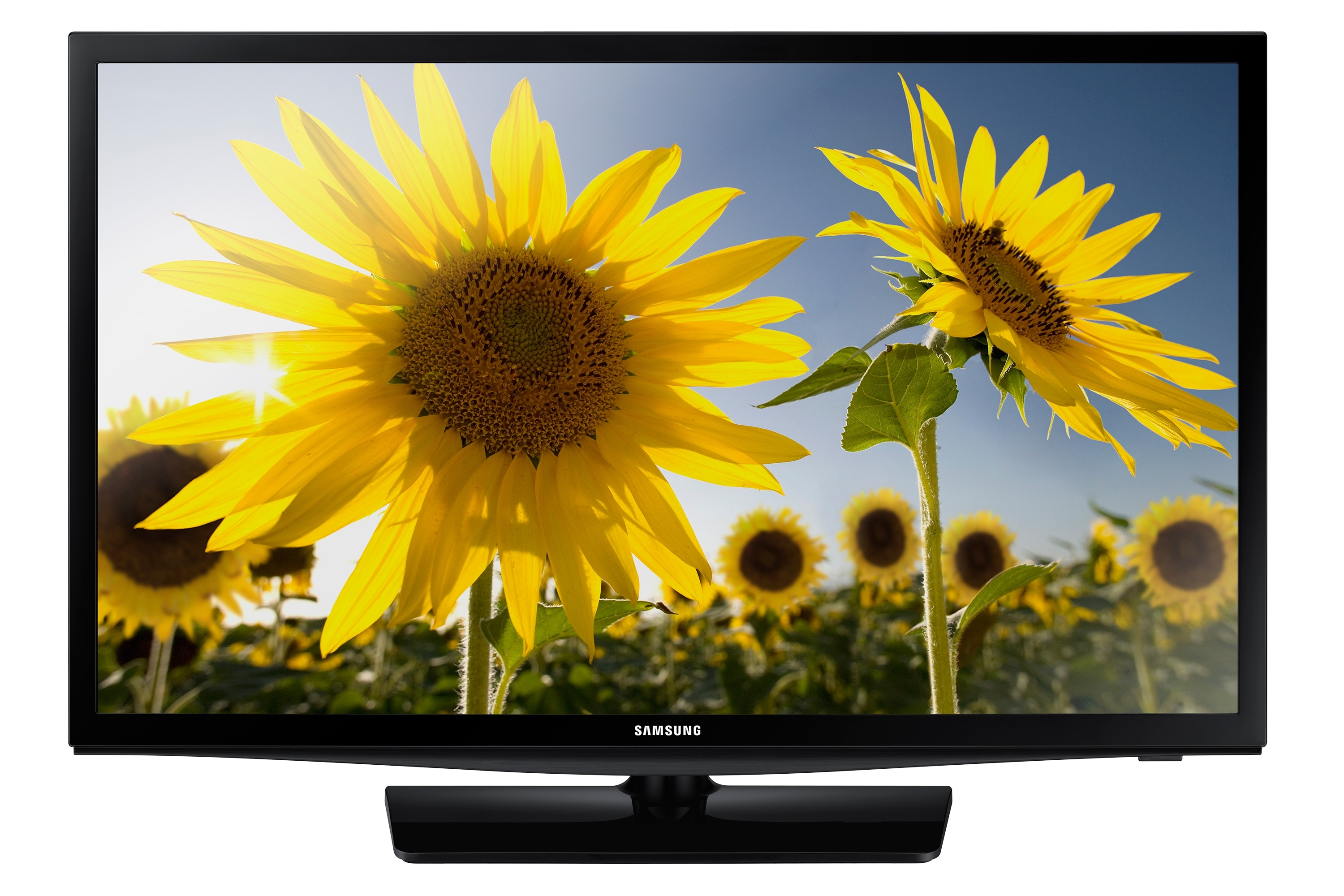 """24""""  TV monitor for sports fans"""